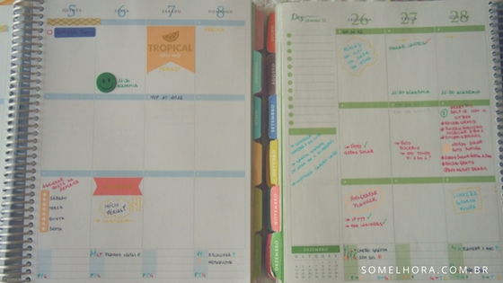 daily planner 2017 coluna